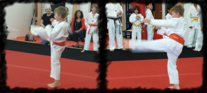 Joe Orange Belt Test