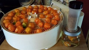 Found ways to use and preserve habanero peppers that don't involve rendering a half gallon of vodka undrinkable